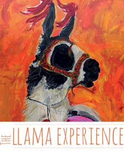 The LLama Experience
